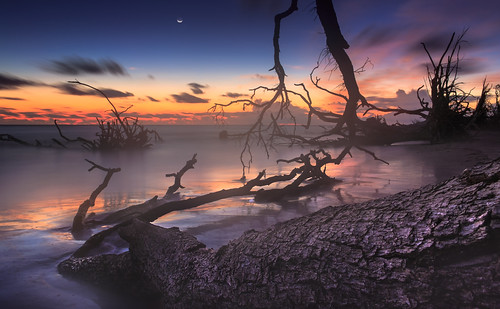 ameliaisland bigtalbotboneyard bigtalbotisland blackrockbeach boneyardbeach canon florida atmosphere bluehour clouds coast color driftwood landscape light longexposure nature seascape shore twilight water autumn