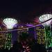 Marina Bay Sands and Gardens by the bay at night