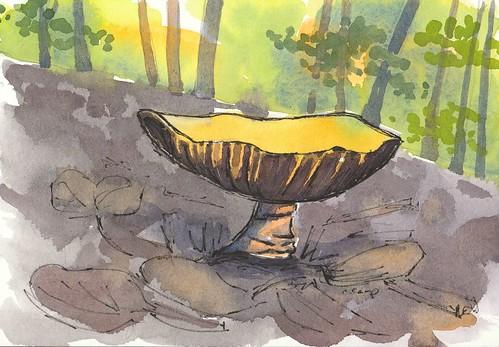 20181022_mushroom_at_work