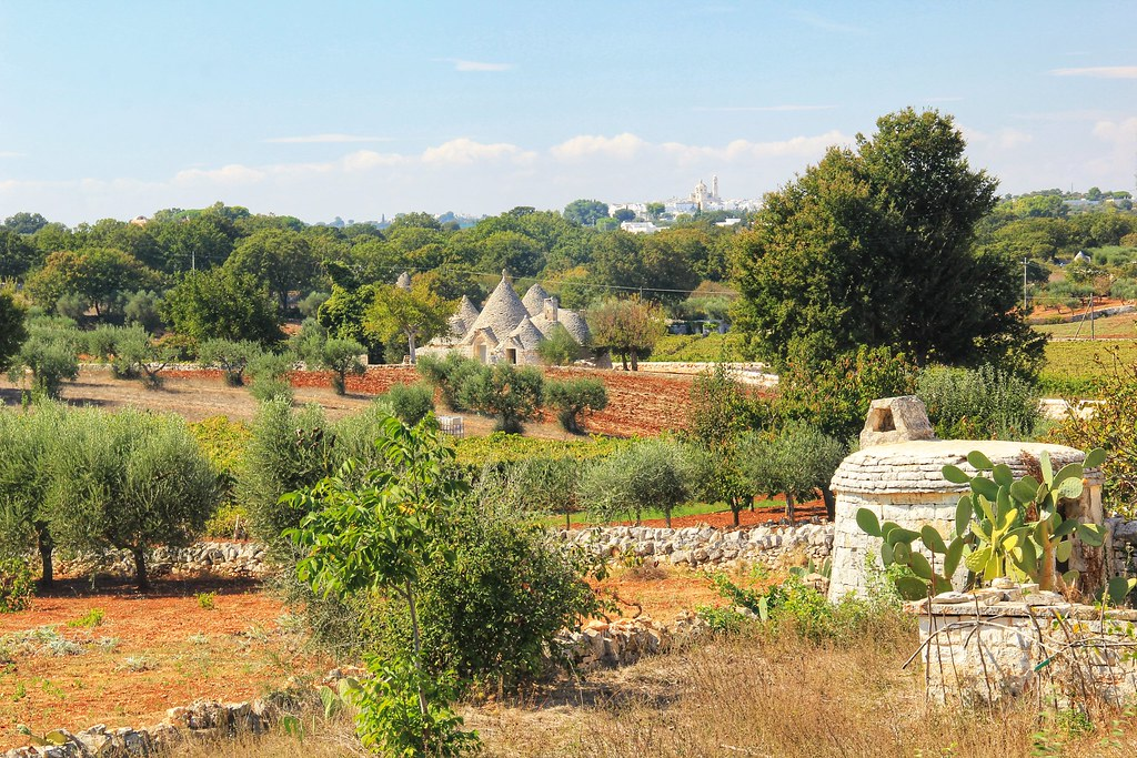 Typical Puglian landscape: prickly pears, olive groves, and Trulli houses.