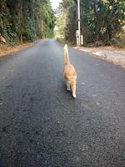 IMG_20180916_083202 - Photo of Montner