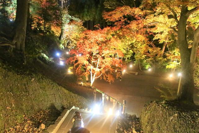 kitanotenmangu-lightup031