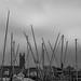Masts in the Marina, Penzance, Cornwall, UK