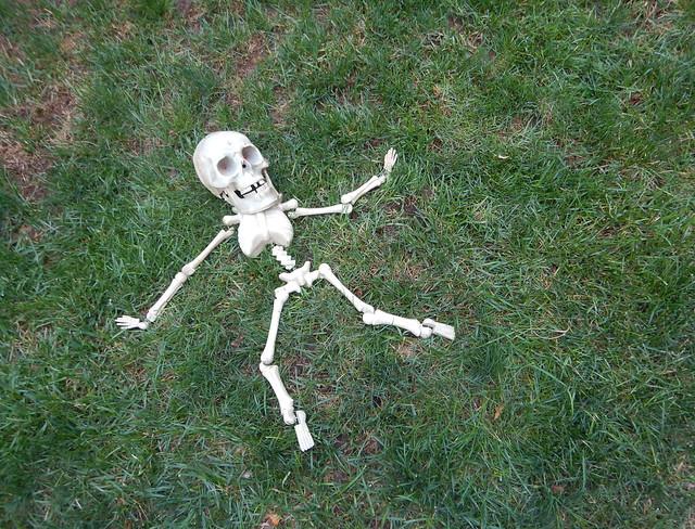 Skeleton Down, Nikon COOLPIX AW130