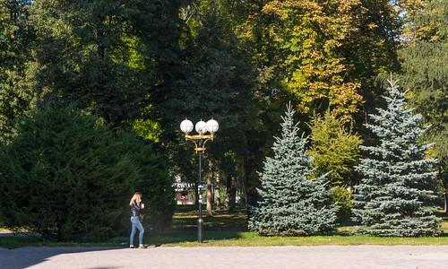 nature park landscape autumn