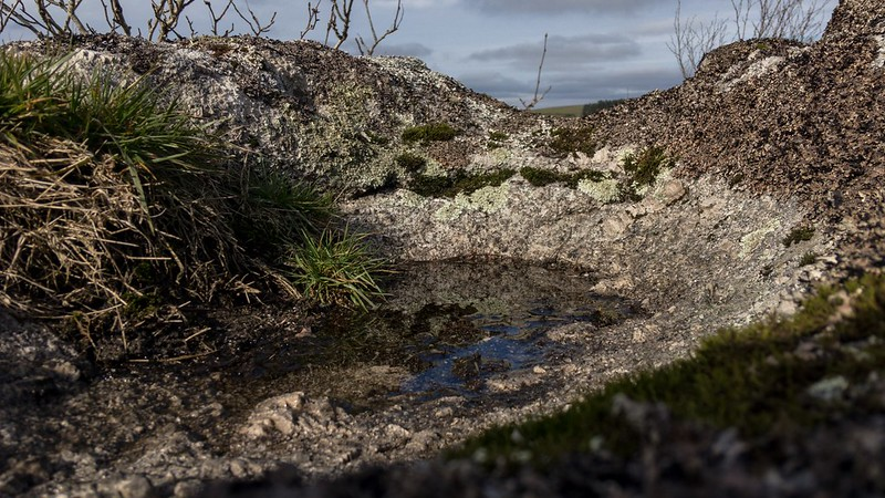 Honeybag North Tor rock basin