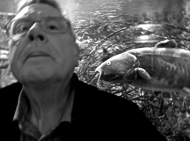 Out of Focus Self-Portrait With a Catfish Approaching