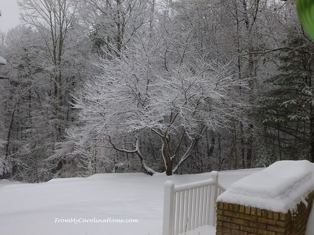 December Snow 2018 at FromMyCarolinaHome.com