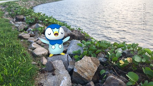 393 Piplup