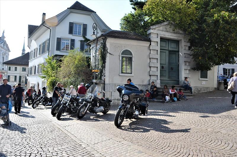 Harley Davidson HESO Tag 30.09 (17)