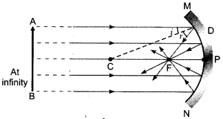 CBSE Sample Papers for Class 10 Science Paper 11 7