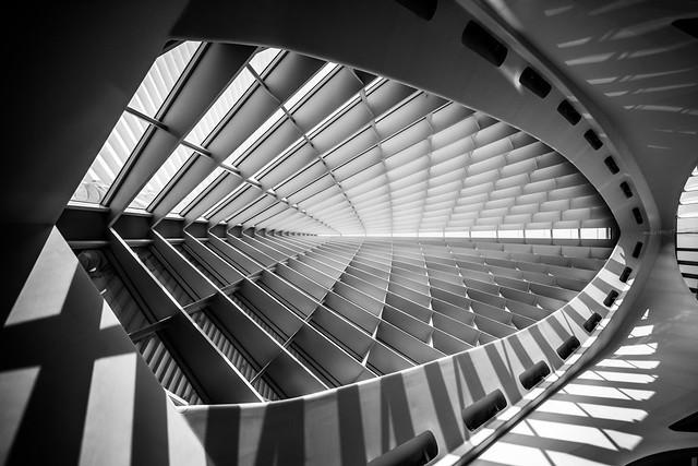 Dreams of Calatrava