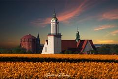 Gliwice,Poland