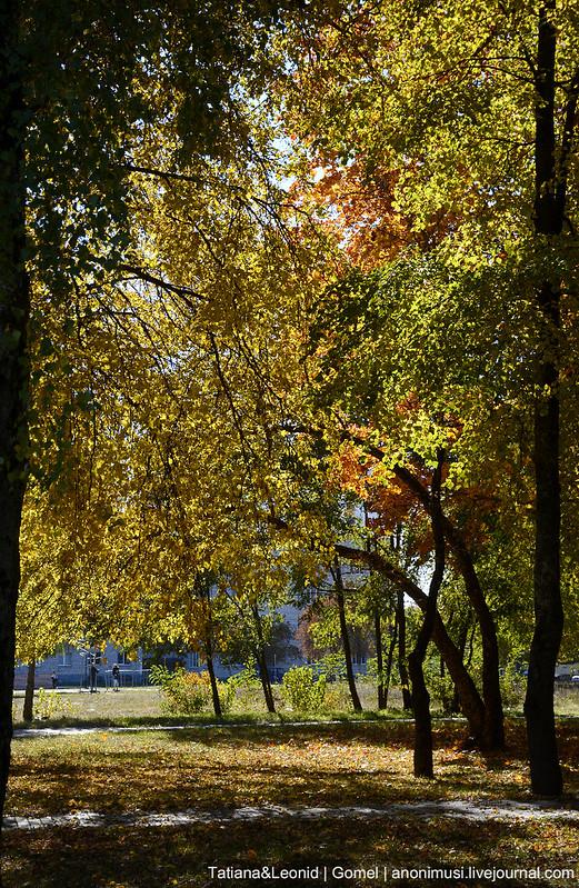 Золотая осень в Гомеле