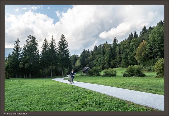 RM_16Sep2018_6231, Nikon D500, AF-S DX Zoom-Nikkor 17-55mm f/2.8G IF-ED