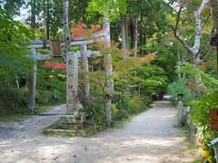 Photo:Left: orshippers' path (sando, 参道) to Hakusan Shrine (白山神社), right: path to Chojuji Temple (阿星山 長寿寺) By Greg Peterson in Japan