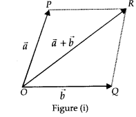 NCERT Solutions for Class 11 Physics Chapter 4 Motion of plane