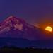 Harvest Moonrise Over Mt Hood, Oregon by haroldshields1