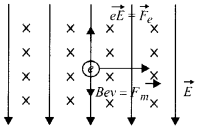 NCERT Solutions for Class 12 Physics Chapter 4 Moving Charges and Magnetism 29