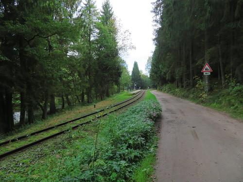 20170928 01 386 ostbay Wald EisenbahnHaltestelle Gleise Weg