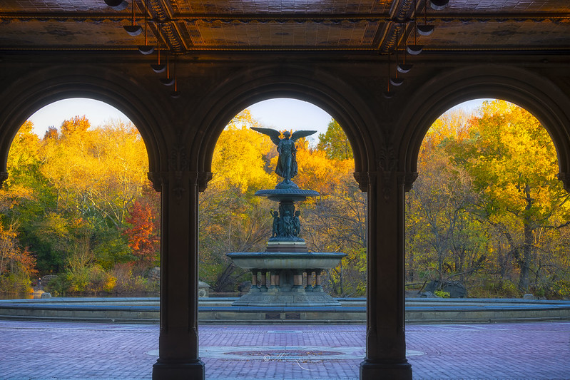 Fall Colors in Central Park #2