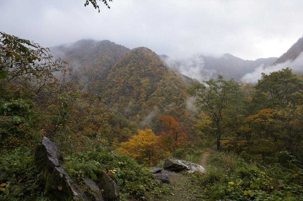 猿が浄土山の紅葉