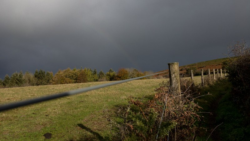 The colours are changing on Mardon Down