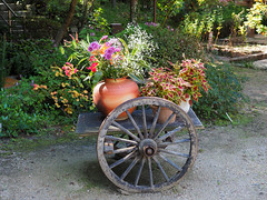 Photo:Flowers on a cart By Greg Peterson in Japan