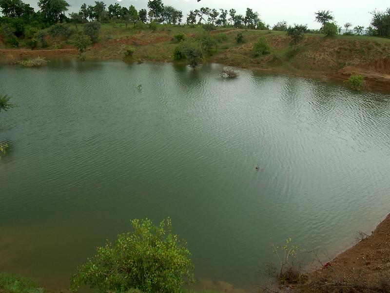 खेत तालाब से नानूखेड़ा पानीदार हो रहा है