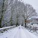 Long Lane, Rivelin Valley, Sheffield