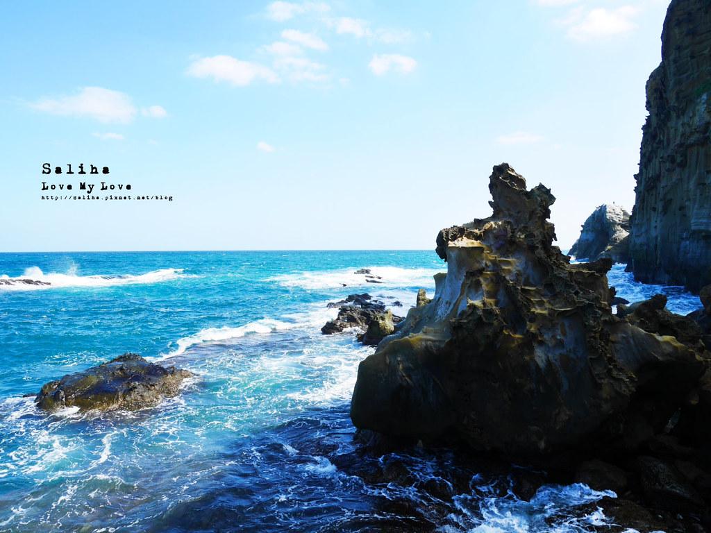 新北瑞芳象鼻岩附近景點一日遊推薦番仔澳酋長岩公園 (6)