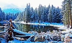 Spring Snow, Yosemite High Country 5-15