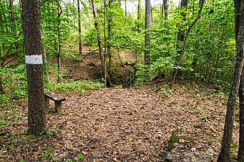 Jew's Harp Spring Trail - 02