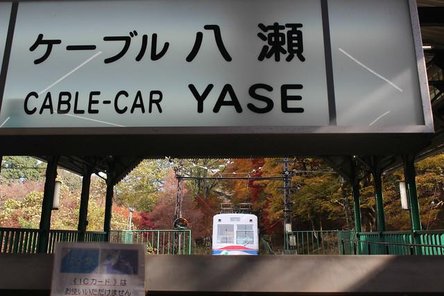 yase-koyo017