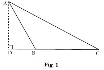 CBSE Sample Papers for Class 10 Maths Paper 10 1