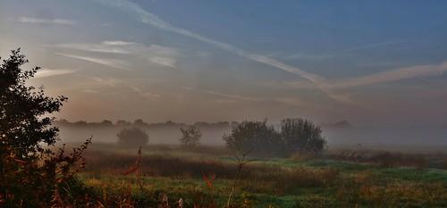 Sunrise Uffelter Binnenveld