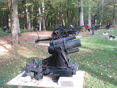 Artillery in Belleau Wood.