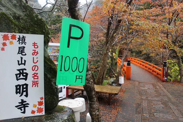 saimyouji-koyo004