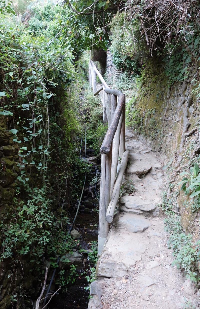Monterosso Vernazza Hike