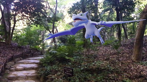 142 Aerodactyl (position=right)