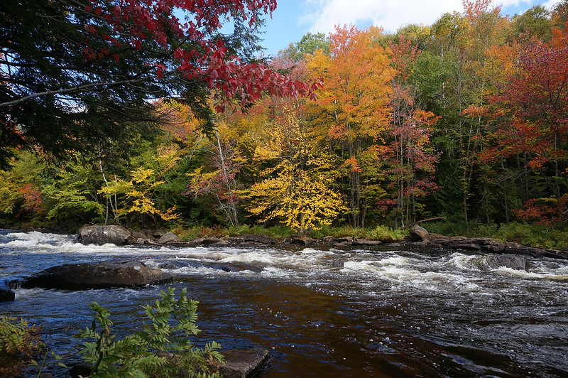 oxtongue rapids01