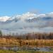 Foggy Morning by skipants60