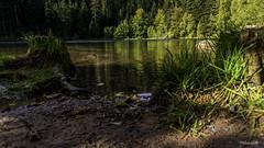 2018 09 29 Lac de la Maix-752396 - Photo of Grandfontaine