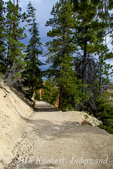 Trail in Bryce Canyon National Park