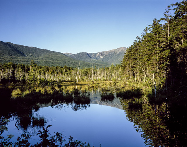 Moose bog near Mount Katahdin at northern end of the Appalachian Trail. Original image from Carol M. Highsmith's America, Library of Congress collection. Digitally enhanced by rawpixel.
