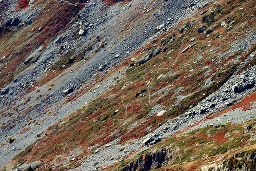 Descente du Col de la Vache versant sud
