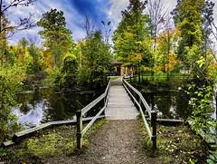 Concord Woods_20181030_21