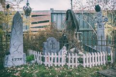 Rutherford Manor Haunt - Edmonton