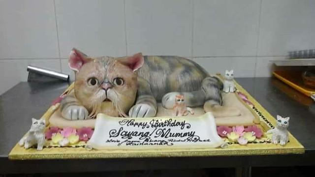 Cat Cake by Onalos Cire Gerg Allereg
