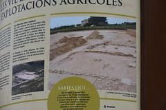 """""""Mil·liari"""" a La Granada"""